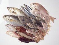 halal seafood Halal Food Fundamental